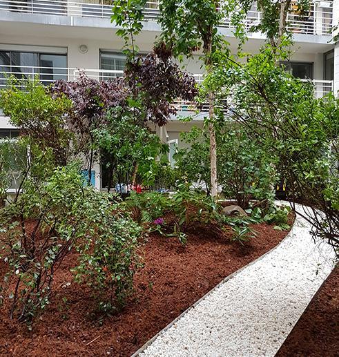 Plantation arbres